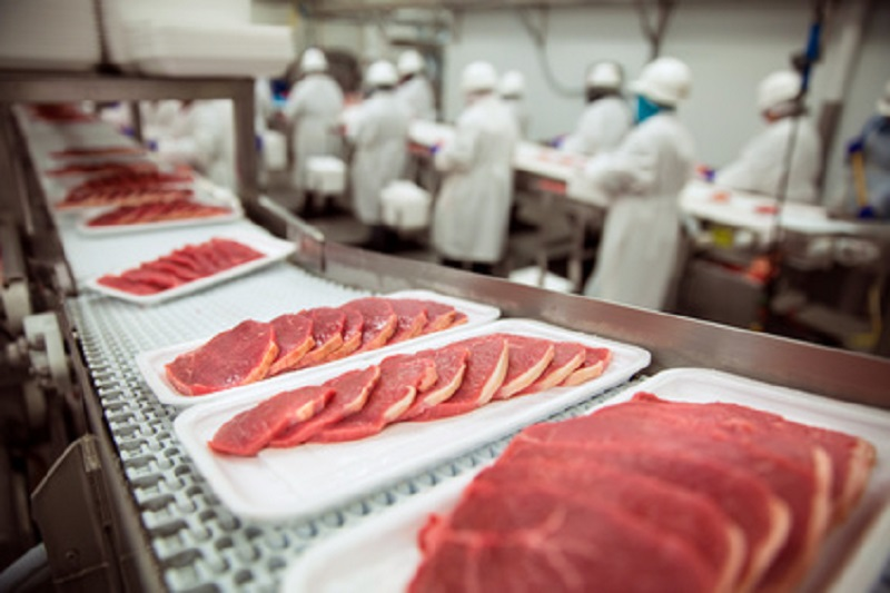 food safety - packing meat at food processing facility